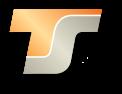 ts logo web ico